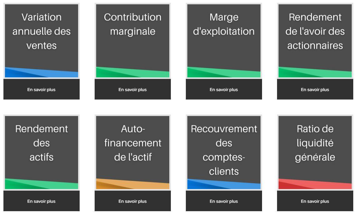 KPI Ratios financiers