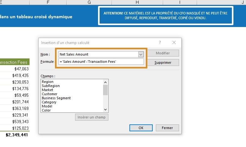 Insérer une fonction personnalisée TCD - Net Sales Amount