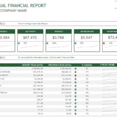 rapport-financier-annuel