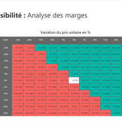 Analyse sensibilité Power BI