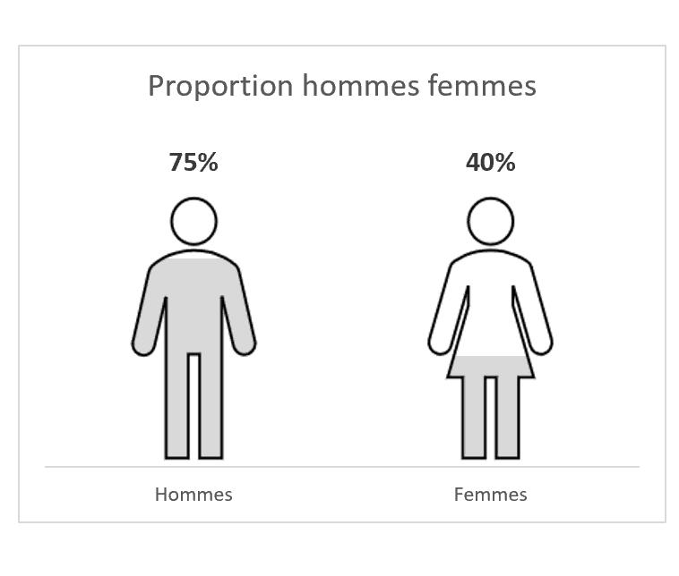 Infographie hommes femmes
