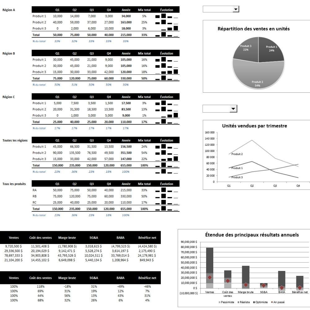 Le CFO masqué - Modèle financier - Budget