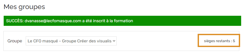 Le-CFO-masque_groupes-ajouter-manuel-reussi3