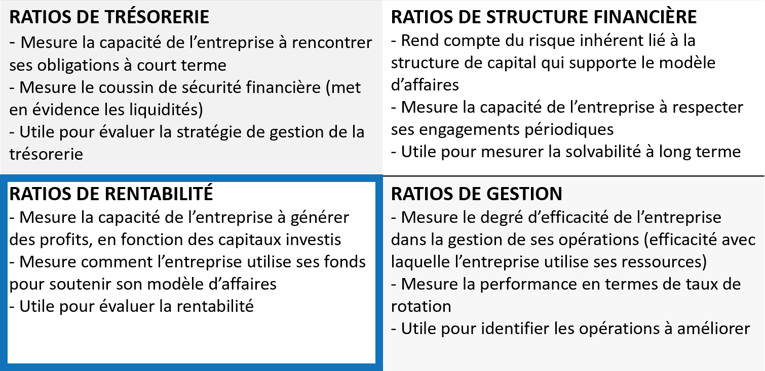 Ratios financiers - Rentabilité