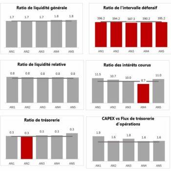 Analyse de ratios financiers temporelle